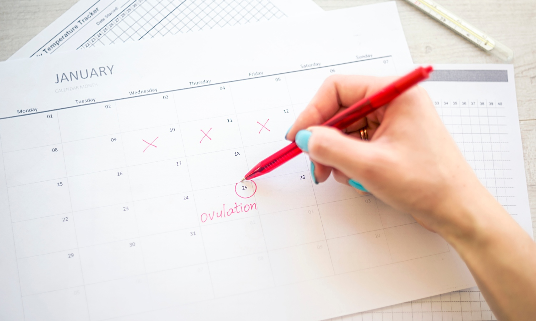 Pro výpočet plodných dnů můžete použít menstruační kalendář nebo kalkulačku